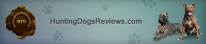 Hunting Dogs Reviews Ad